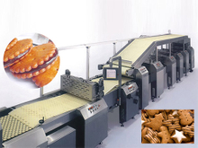 Soft or Hard Biscuit Production Line